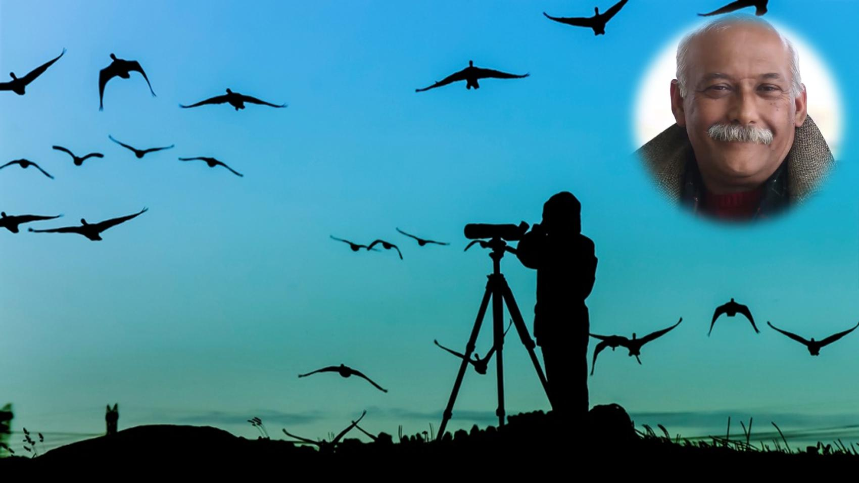 Career in Bird Watching